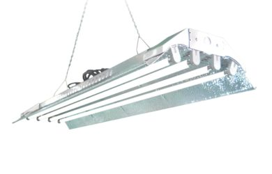 T5 Grow Light DL844s