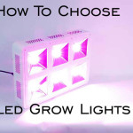 how to choose led grow lights