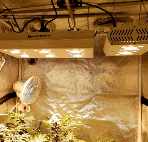 COB LED: New and Efficient Grow Lights